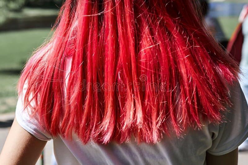妇女头发明亮的桃红色颜色 库存照片