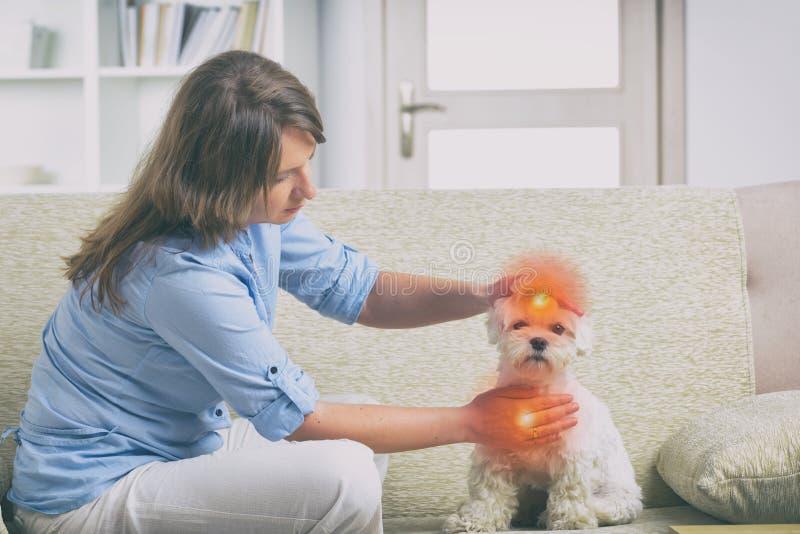 妇女实践的reiki疗法 免版税库存照片