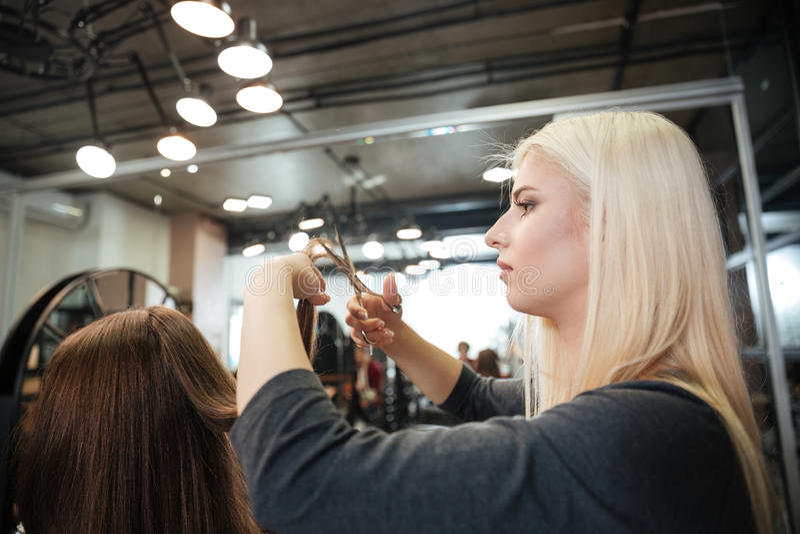 妇女客户的女性美发师切口头发美容院的 库存图片