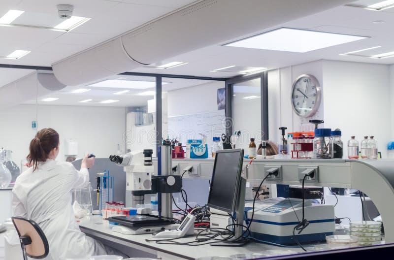 妇女工作在有显微镜的实验室 从后面的看法 免版税库存照片
