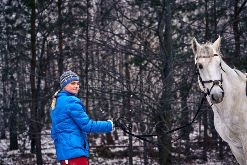 妇女带领在皮带的一匹马 库存图片