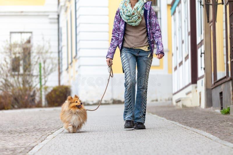 妇女带领她的在皮带的狗 免版税库存照片