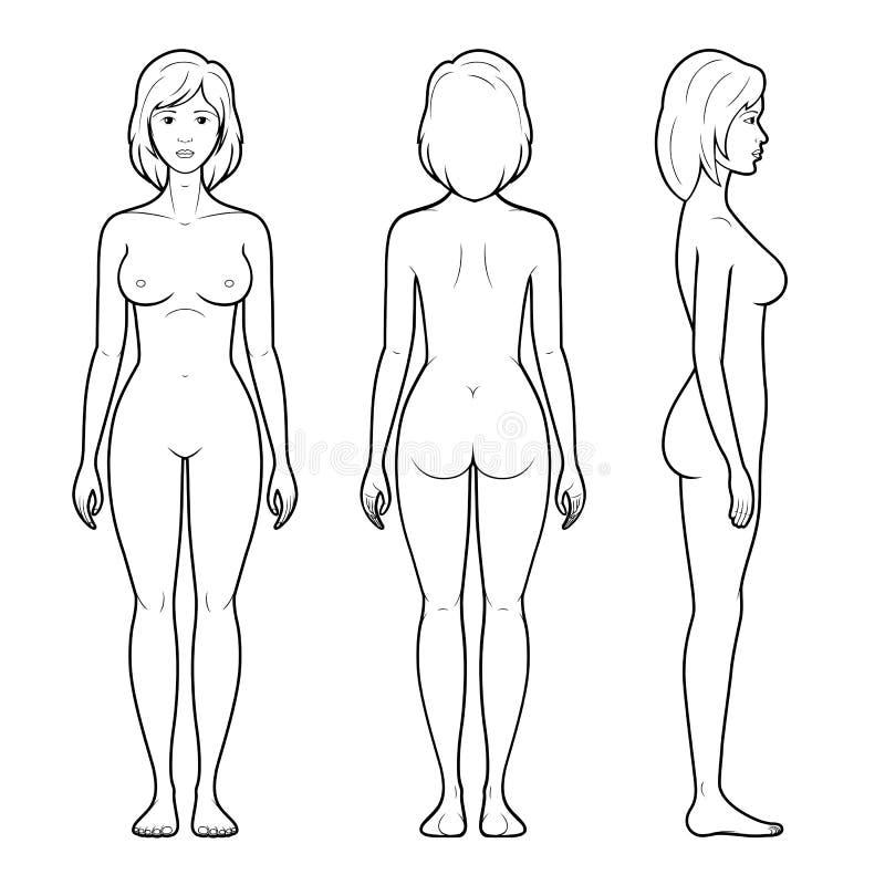 4妇女形象的例证 向量例证