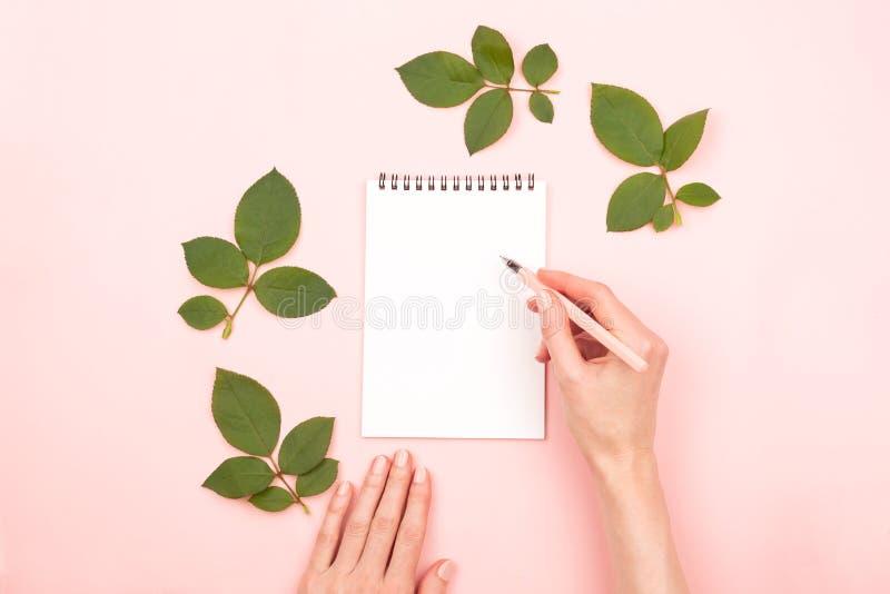 妇女手和笔记薄 免版税库存照片
