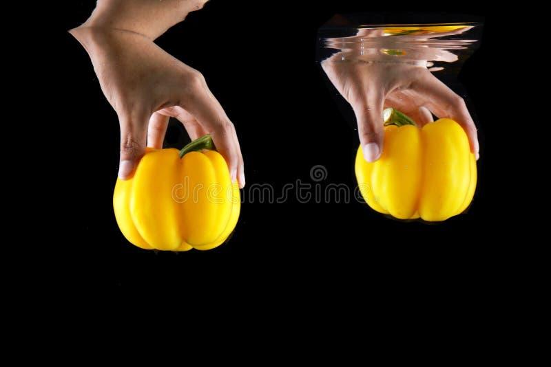 妇女手藏品菜黄色喇叭花胡椒隔绝了 素食空间的关闭 概念水多的黄色辣椒粉被投下入 库存图片