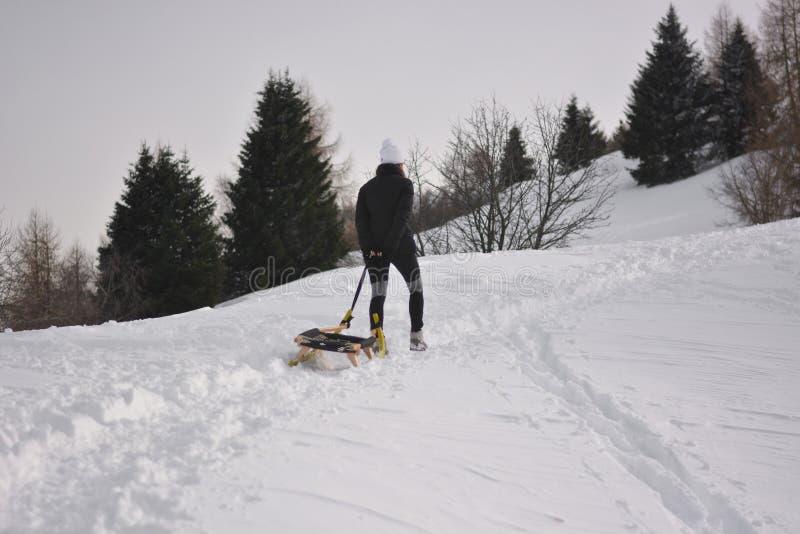 妇女扯拽往山的上面的一个雪撬然后下降充满喜悦每美好的冬日 库存照片
