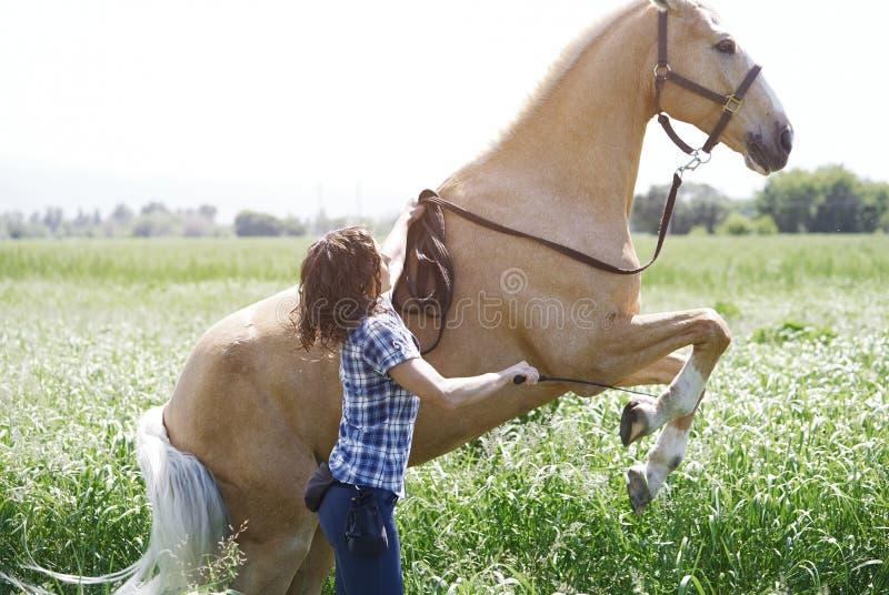 妇女抚养的训练马  免版税库存照片