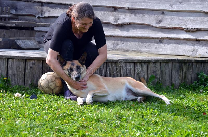 妇女掠过她的狗 免版税库存照片