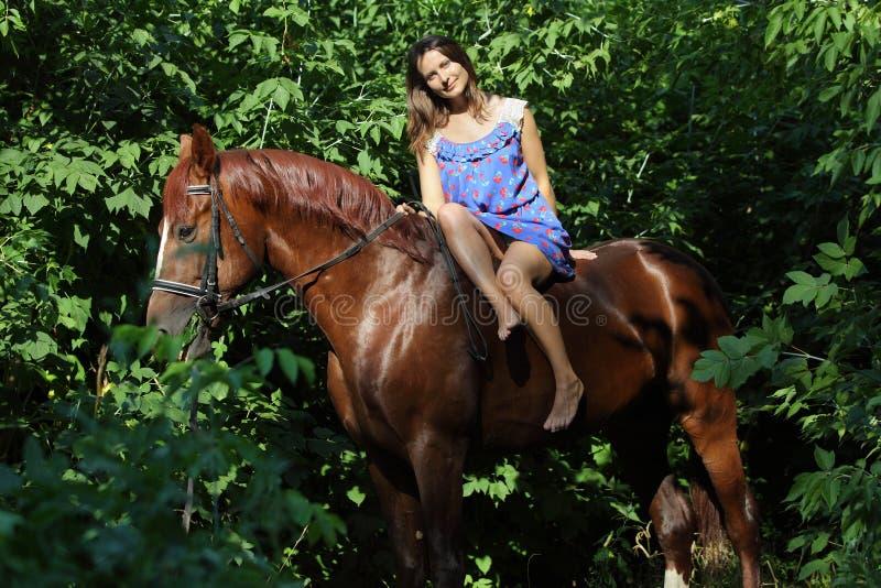 妇女无鞍骑乘马通过森林 库存图片