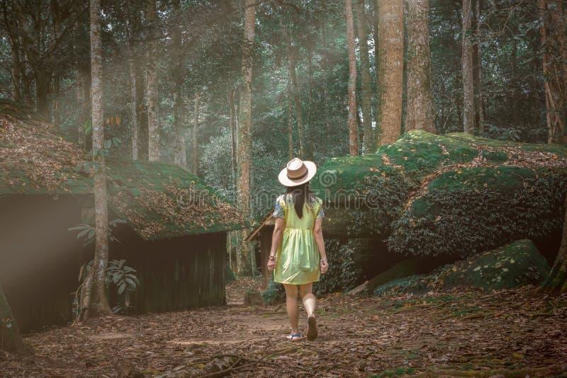 妇女是在雨林、环境和旅行 军事政治学校Phu Hin Rongkla碧差汶府, 库存照片