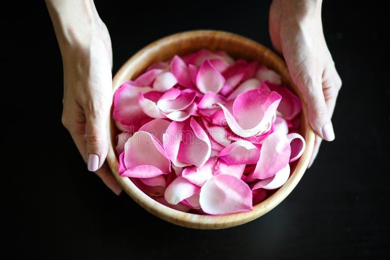 妇女有玫瑰花瓣的` s手特写镜头宏观照片,在一张黑桌上的木碗 免版税库存照片