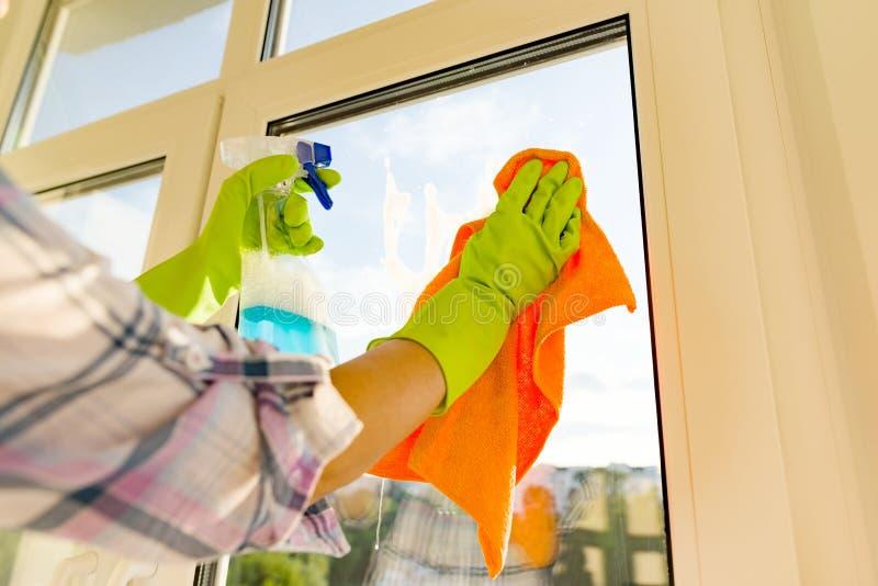 妇女清洁窗口,在橡胶防护手套、旧布和喷雾器洗涤剂的手特写镜头  库存照片