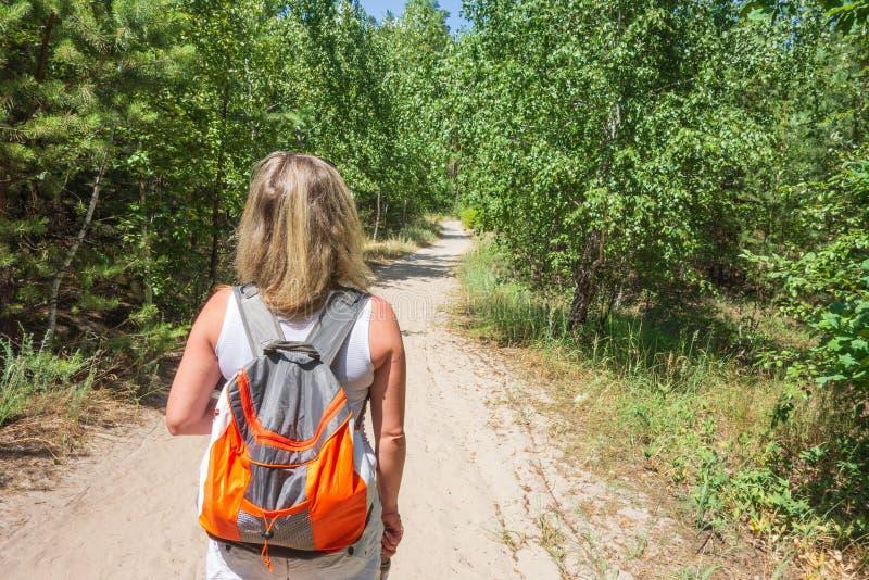 妇女特写镜头有背包的在trailway在冷杉和松树活跃生活方式,远足和旅游业的森林概念 库存图片