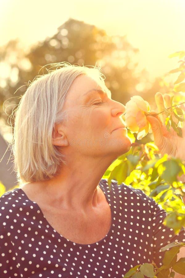 妇女玫瑰色气味橙色光 免版税库存照片