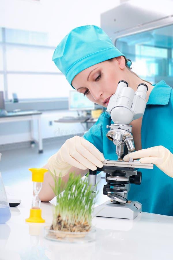 妇女生物学家与显微镜一起使用 图库摄影