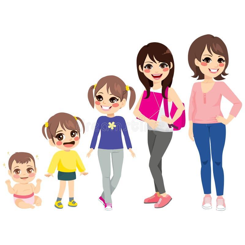 妇女生长阶段 向量例证
