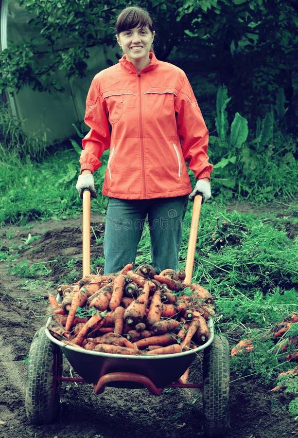 妇女用被收获的红萝卜 免版税库存图片