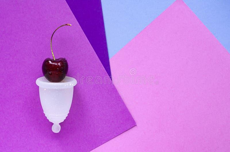 妇女的健康的概念 白色月经杯 免版税库存图片