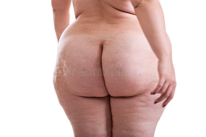 妇女的屁股有肥胖病和脂肪团的 库存图片