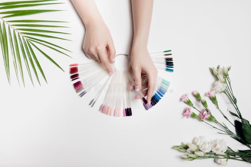妇女的手好看照片有调色板颜色的形成胶冻油漆 时尚关心,裸体修指甲 在棕榈绿色叶子和光附近 免版税库存图片