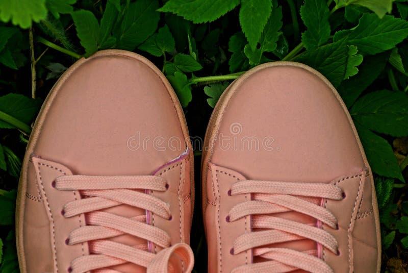 妇女的桃红色运动鞋外面绿草和叶子的 库存图片