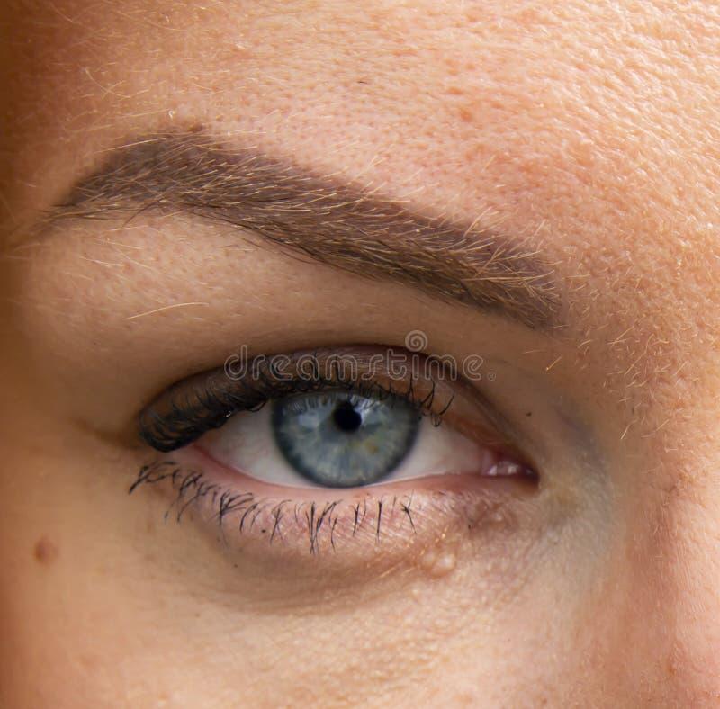 妇女的灰色眼睛看近距离 免版税库存照片