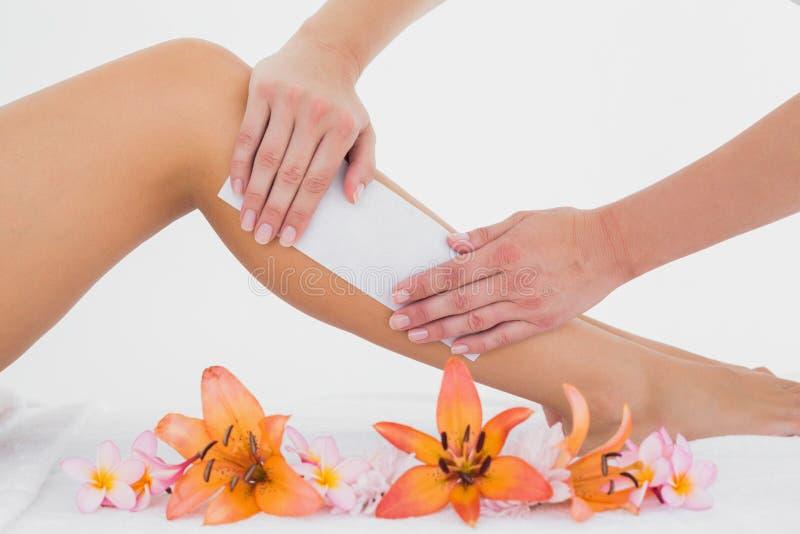 给妇女的腿打蜡的治疗师在温泉中心 免版税库存照片