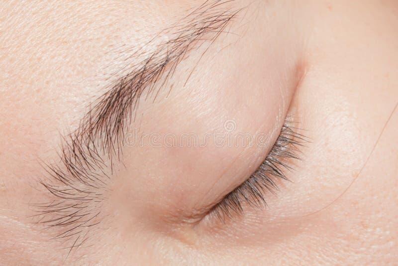 妇女眼睛没有组成,关闭,显示眼眉和睫毛 库存照片