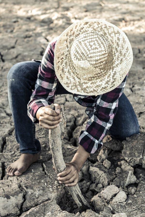 妇女种植了在遭受干旱的土地的一棵树希望的 免版税图库摄影