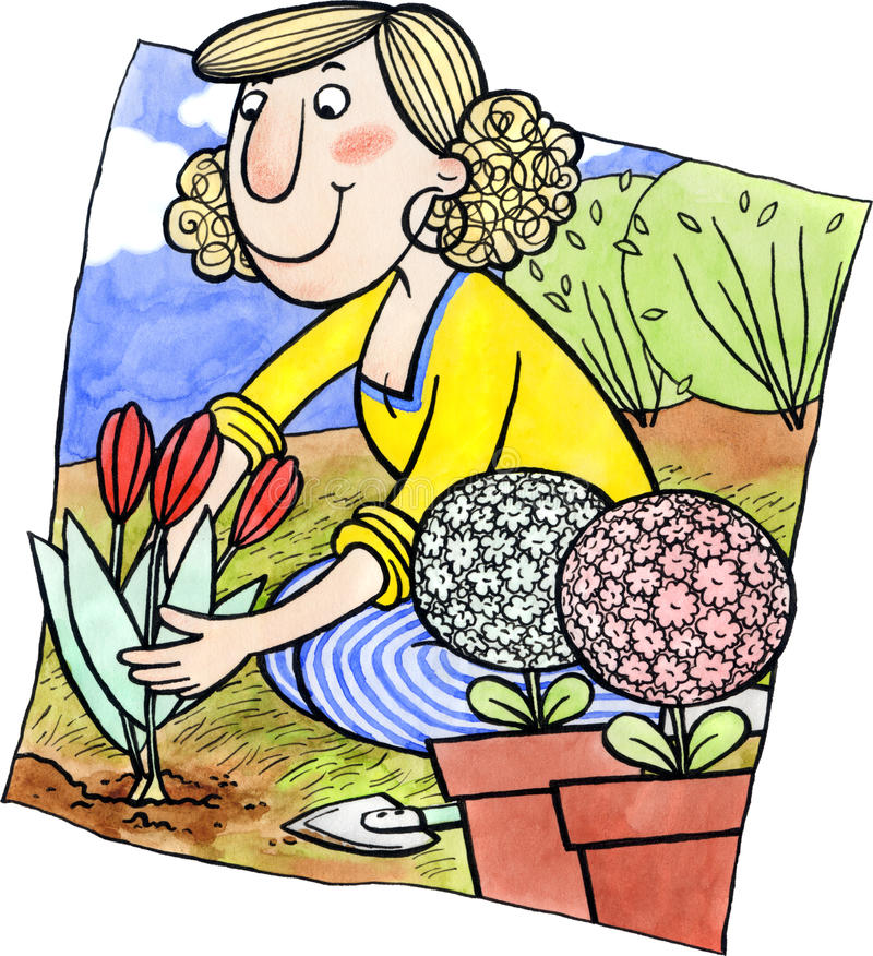 妇女种植花 库存例证