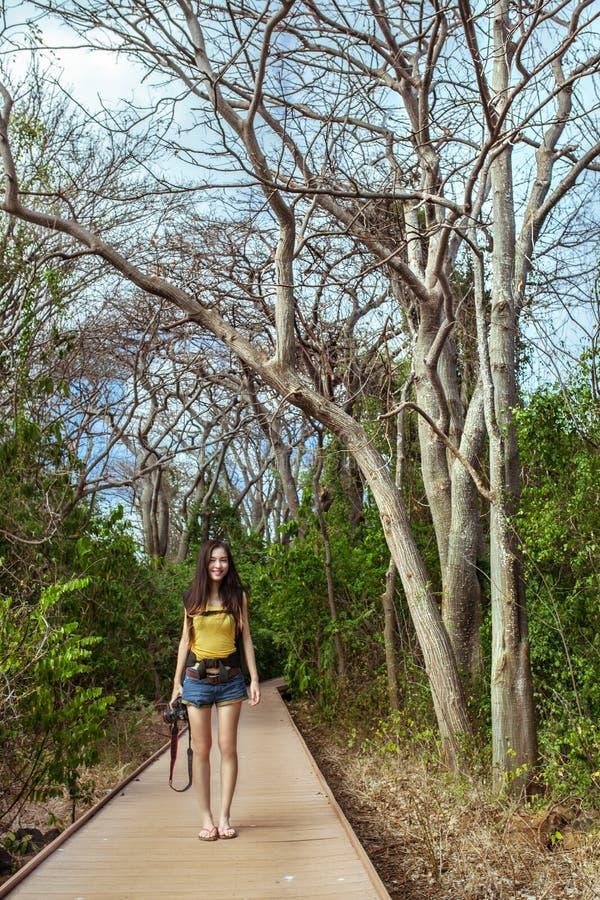 妇女站立与照相机用森林道路方式 库存图片