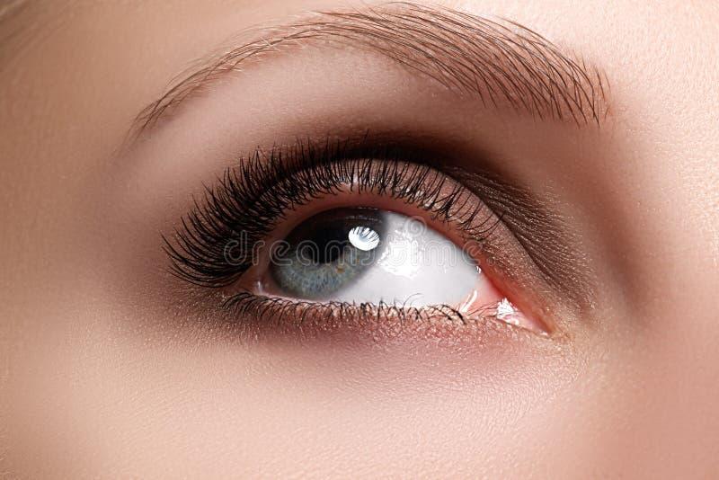 妇女美丽的眼睛宏观射击与极端长的睫毛的 图库摄影
