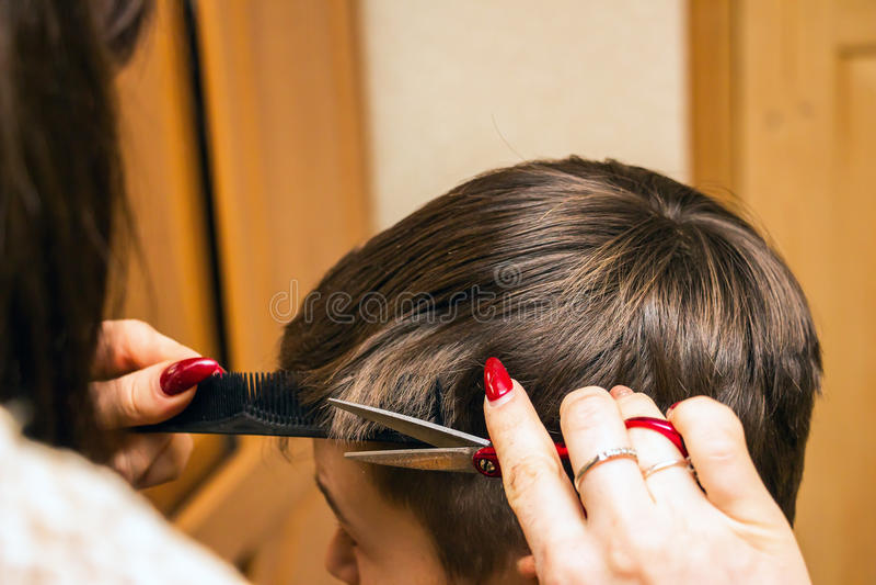妇女美发师切开男孩 免版税库存图片