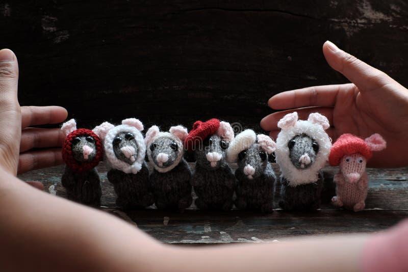 妇女胳膊拿着毛线灰色老鼠,微小的鼠手工制造产品 库存照片