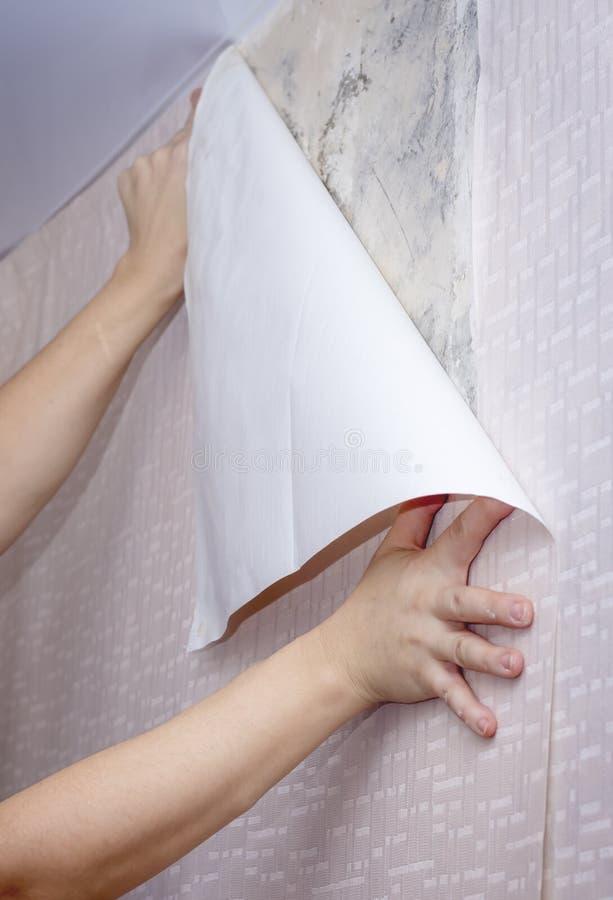 妇女胶合在墙壁上的墙纸 免版税库存照片