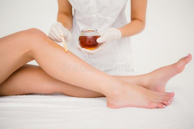 给妇女腿打蜡的治疗师在温泉中心 库存图片