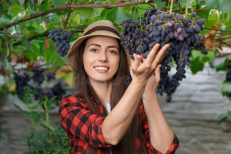 妇女花匠用葡萄 免版税库存图片