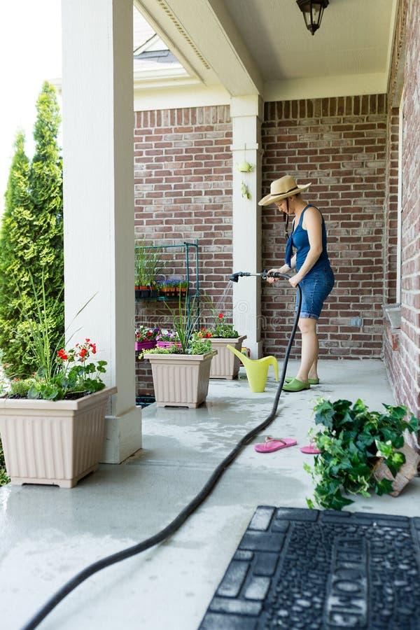 妇女花匠站立的浇灌的新的植物 库存照片
