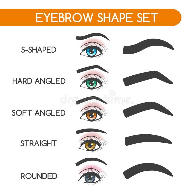 妇女被设置的眼眉形状 库存例证