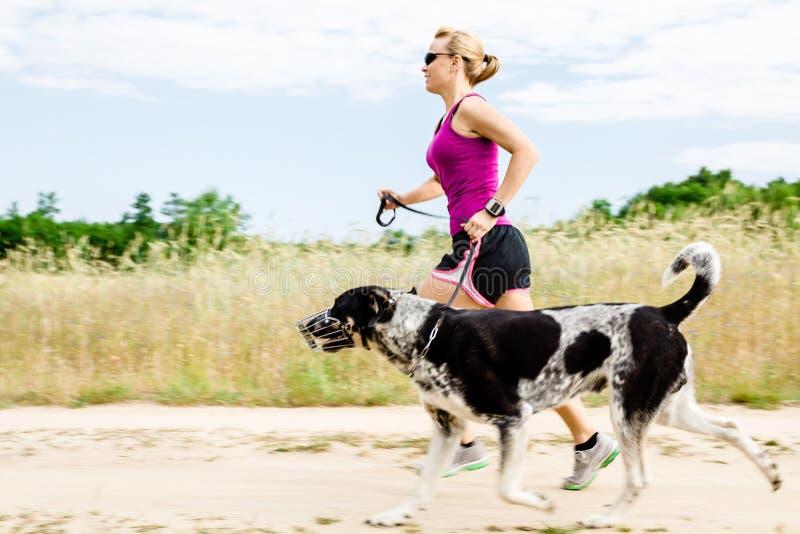妇女赛跑者运行中,在夏天本质的走的狗 库存图片