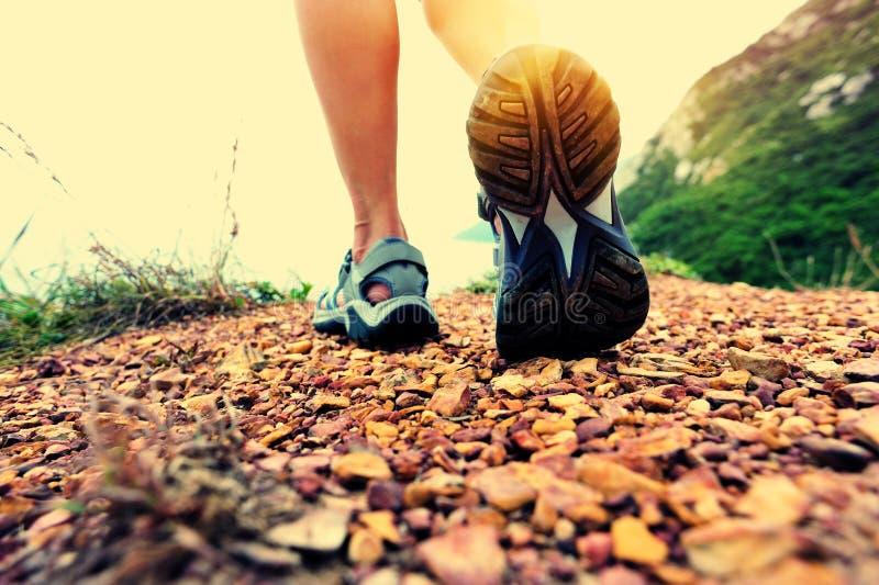 妇女走在海边山行迹的远足者腿 免版税库存图片