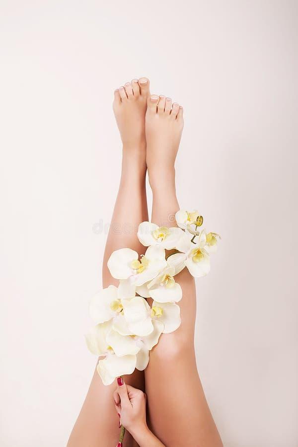 妇女身体关心 关闭有完善的光滑的软的皮肤、修脚和美好的手的长的女性腿有自然修指甲的, H 免版税图库摄影