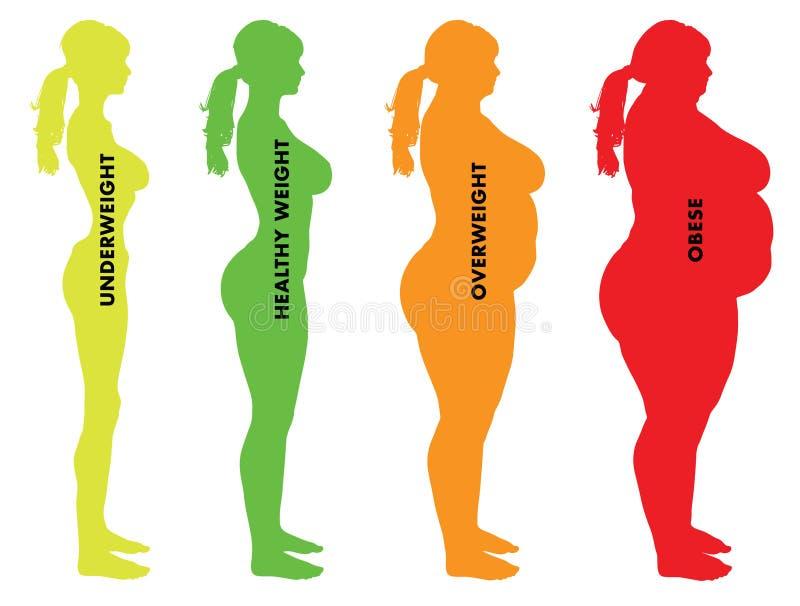 妇女身体容积指数BMI类别 库存例证