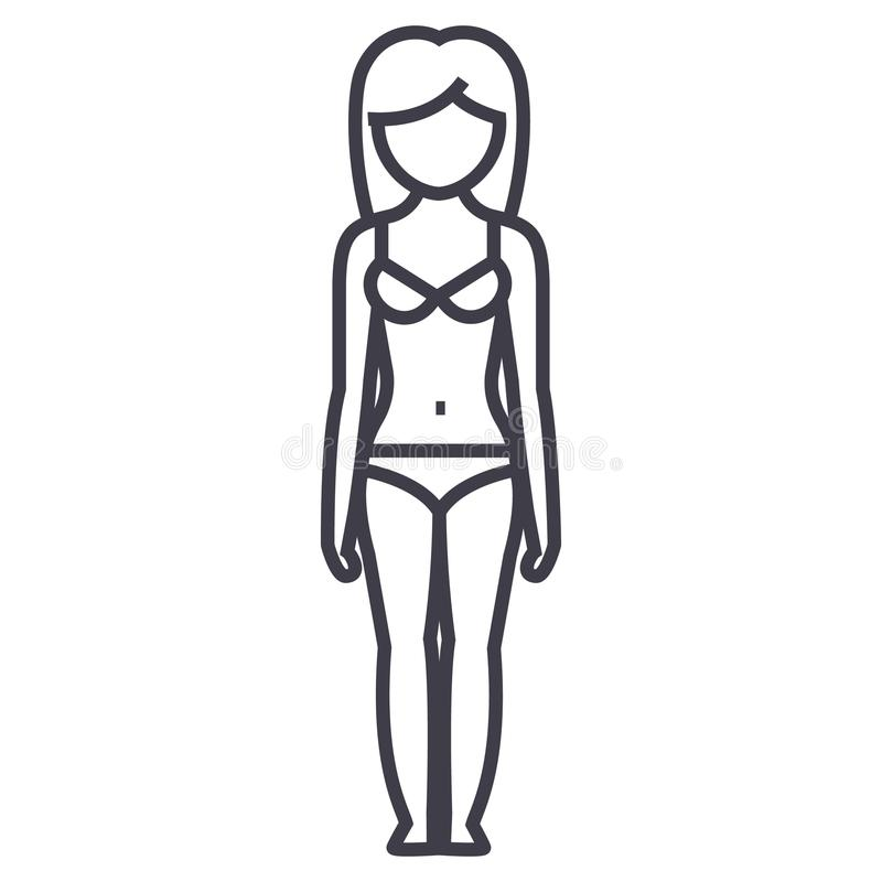 妇女身体形状,女性sillhouete前面,女用贴身内衣裤传染媒介线象,标志,在背景,编辑可能的冲程的例证 库存例证
