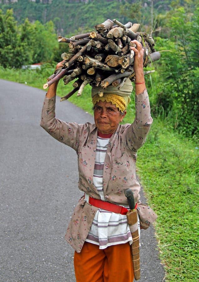 妇女运载的木头在印度尼西亚 免版税图库摄影