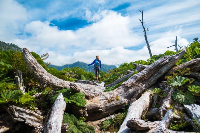 妇女远足者通过困难的地形移动 免版税库存照片