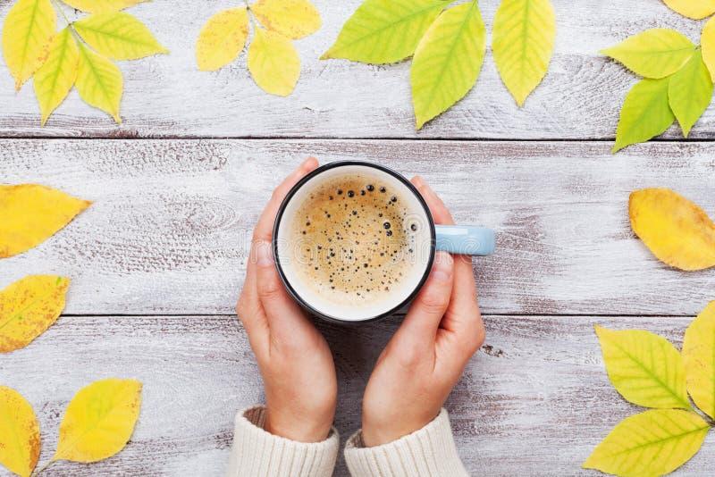妇女递拿着早晨咖啡在葡萄酒木桌装饰的秋天黄色叶子顶视图的 舒适秋天早餐 库存图片