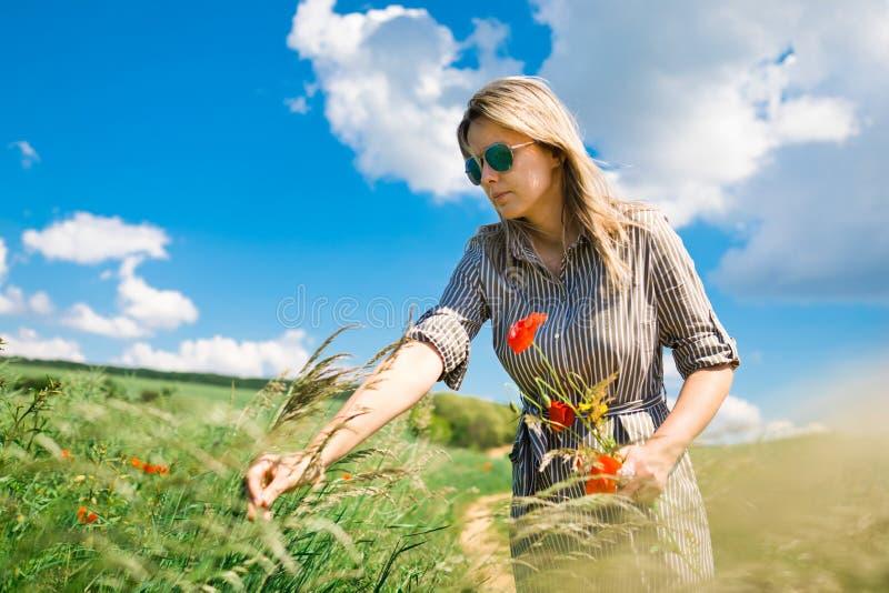 妇女采采摘野花的花束鸦片 库存照片