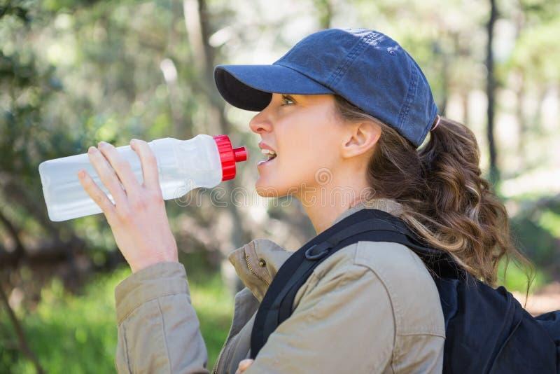 妇女饮用水,当做断裂时 免版税库存图片