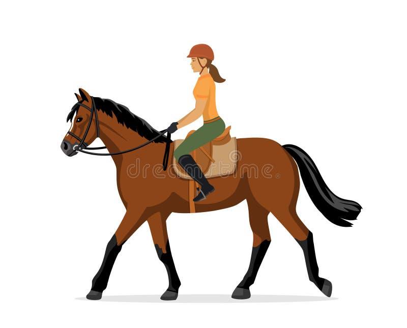 妇女马术 跳马球车手的驯马骑马马马现出轮廓体育运动向量 查出 向量例证
